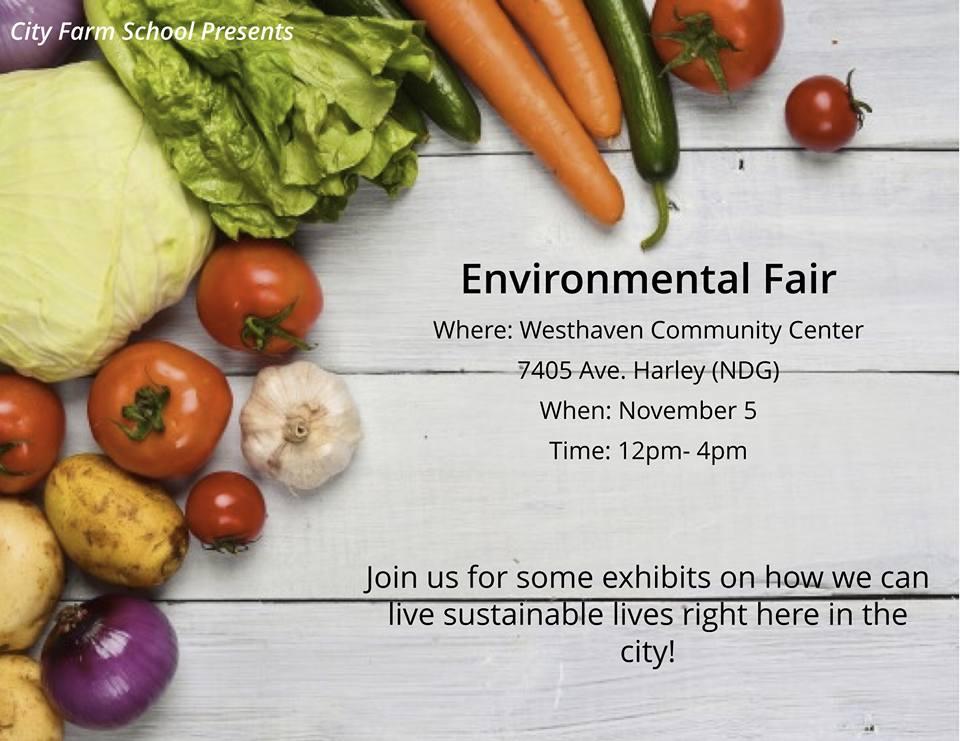 Environmenta Fair